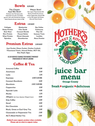 Cover image of the Juice Bar PDF